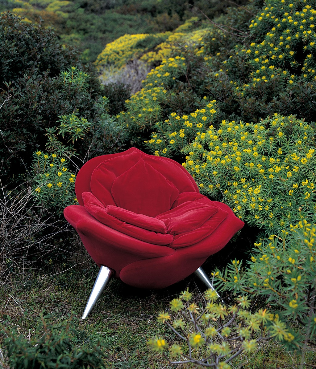EDRA - ROSE CHAIR