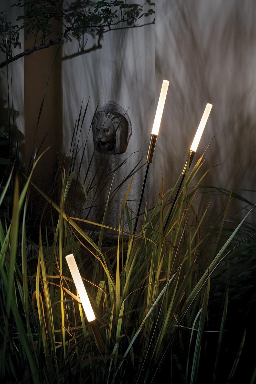 Artist Lamps Natural Light